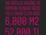İzmir Bergama Paşaköy De Satılık Baraja 0 Hobi Bahçesi zeytinlik 600 m