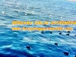 İzmir dikili mutlu tatil siTesinde satılık konut imarlı köşe aRsa
