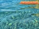 izmir aliağa yeni şakran bozburun mevki satılık denize yakın deniz man